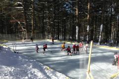 backyard-ice-rink1