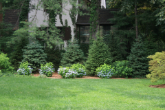 Landscaping-23