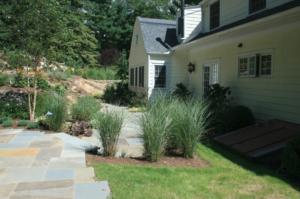 Tall grass next to stone patio