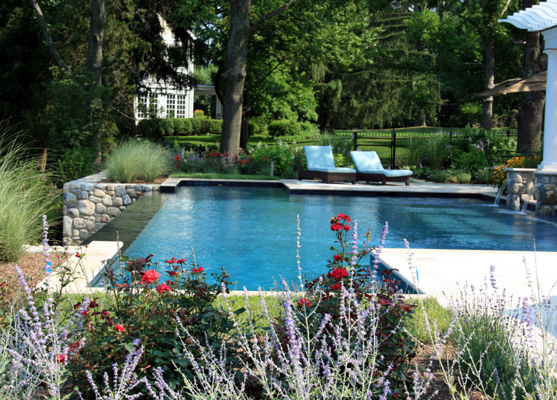 Pool with lilacs and red flowers around it
