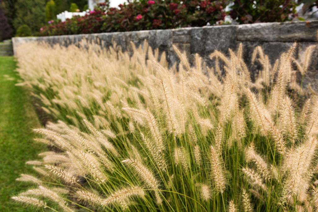 Turkey-Hill-Westport-1010