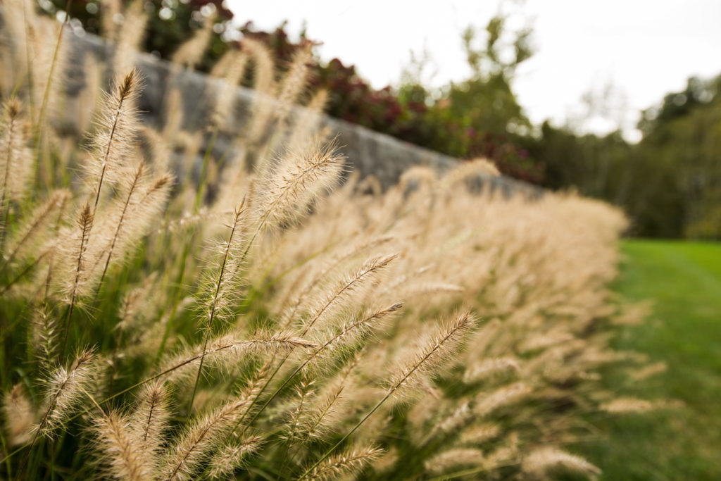 Turkey-Hill-Westport-109