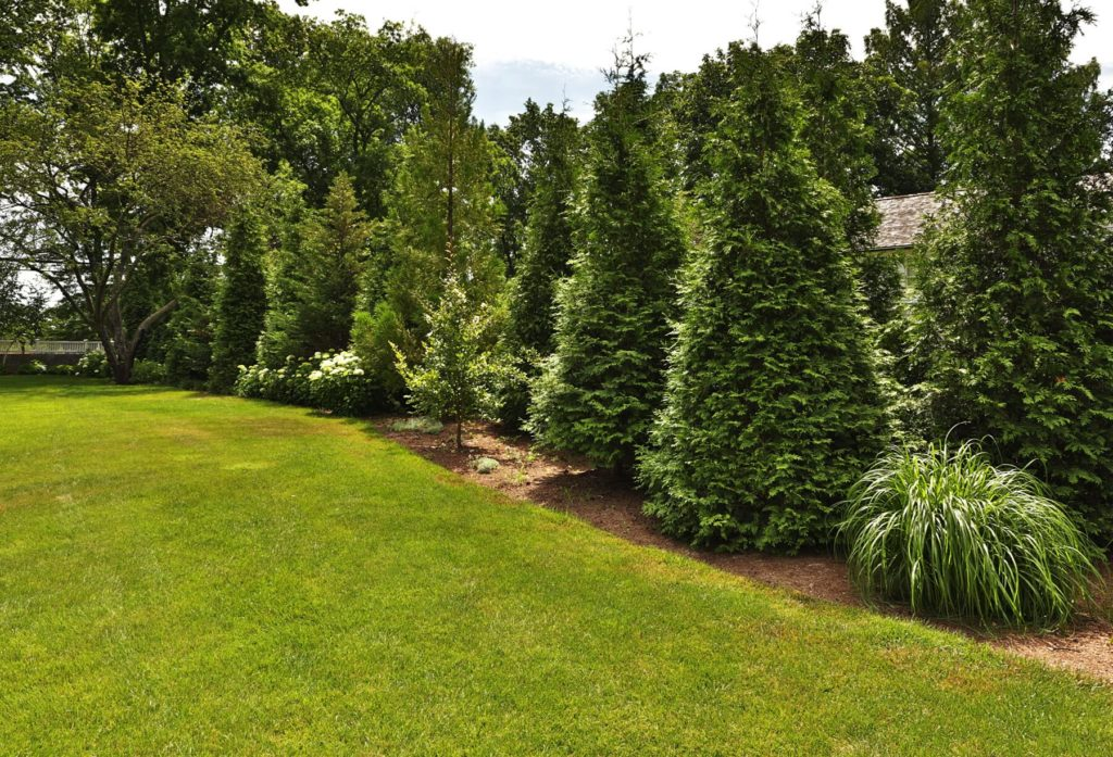 Turkey-Hill-Westport-CT-20-1067