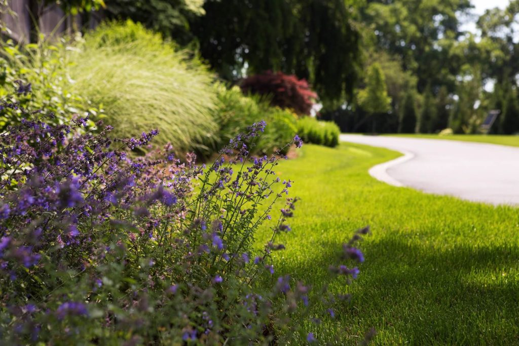 Turkey-Hill-Westport-CT-30-0885