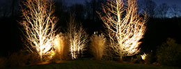Landscape Design and Architecture - Landscape Lighting