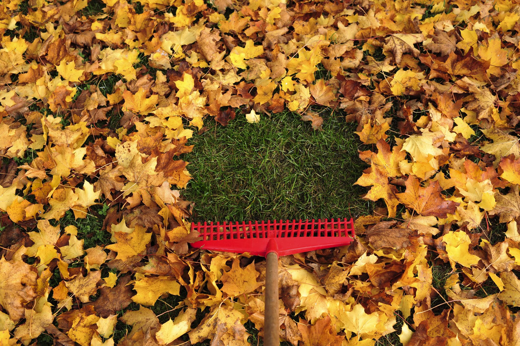fall property maintenance
