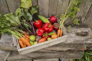 Assortment of vegetables in wooden box