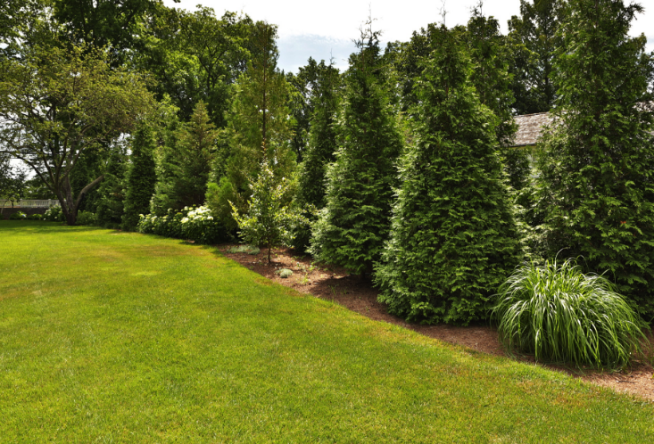 Landscape Maintenance | Landscape Design Redding CT | Greenwich CT