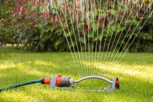 Lawn sprinkler watering the lawn