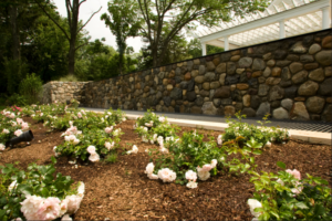 White flowers in flower bed next to stone walkway